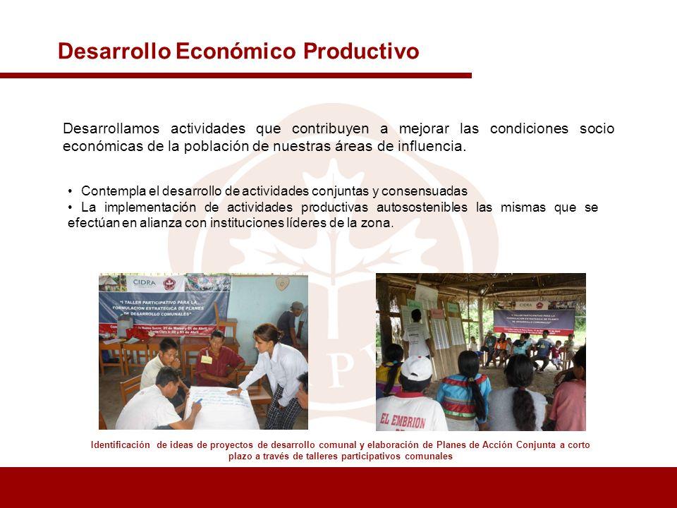 Desarrollo Económico Productivo Identificación de ideas de proyectos de desarrollo comunal y elaboración de Planes de Acción Conjunta a corto plazo a