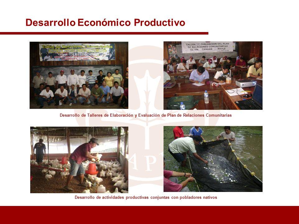 Desarrollo de actividades productivas conjuntas con pobladores nativos Desarrollo Económico Productivo Desarrollo de Talleres de Elaboración y Evaluac