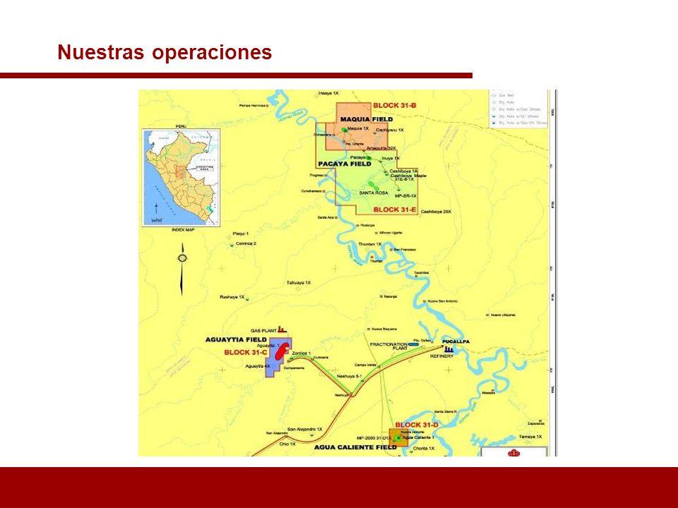 Maple Gas, bajo Contrato de Licencia con PERUPETRO, el 22 Abril de 1994 se hace cargo de las operaciones de los Lotes 31 B, 31 C y 31D: Campos de Maquía, Aguaytía y Agua Caliente respectivamente.