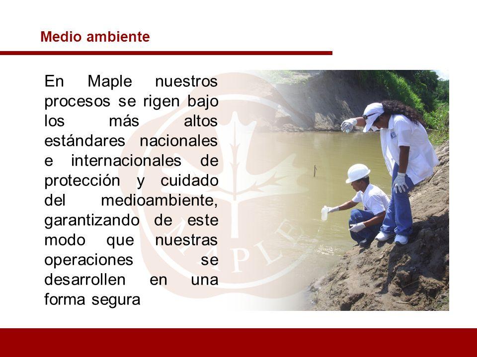 Medio ambiente En Maple nuestros procesos se rigen bajo los más altos estándares nacionales e internacionales de protección y cuidado del medioambient