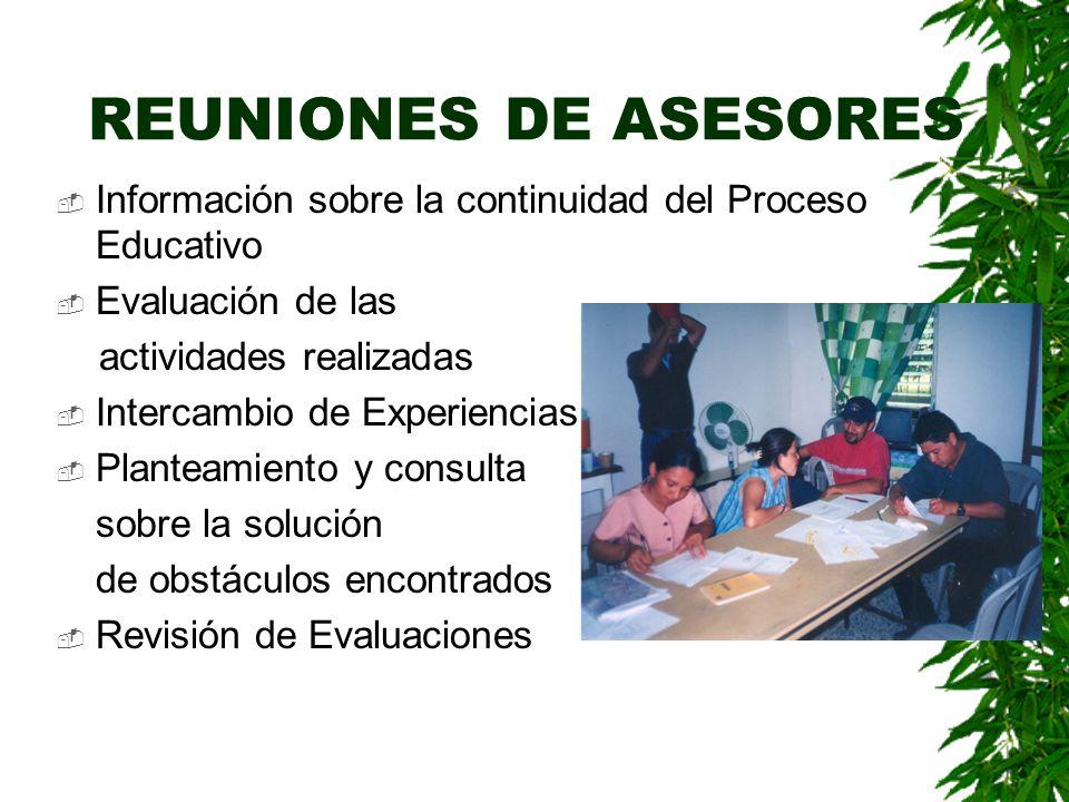 MICROCENTROS Informes Mensuales (tutores y asesores) Planificación mensual Revisión de la continuidad del PEC Planificación de actividades de los grup