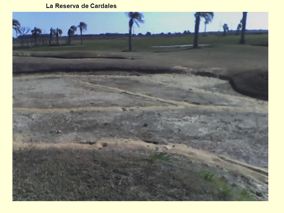 14 La Reserva de Cardales