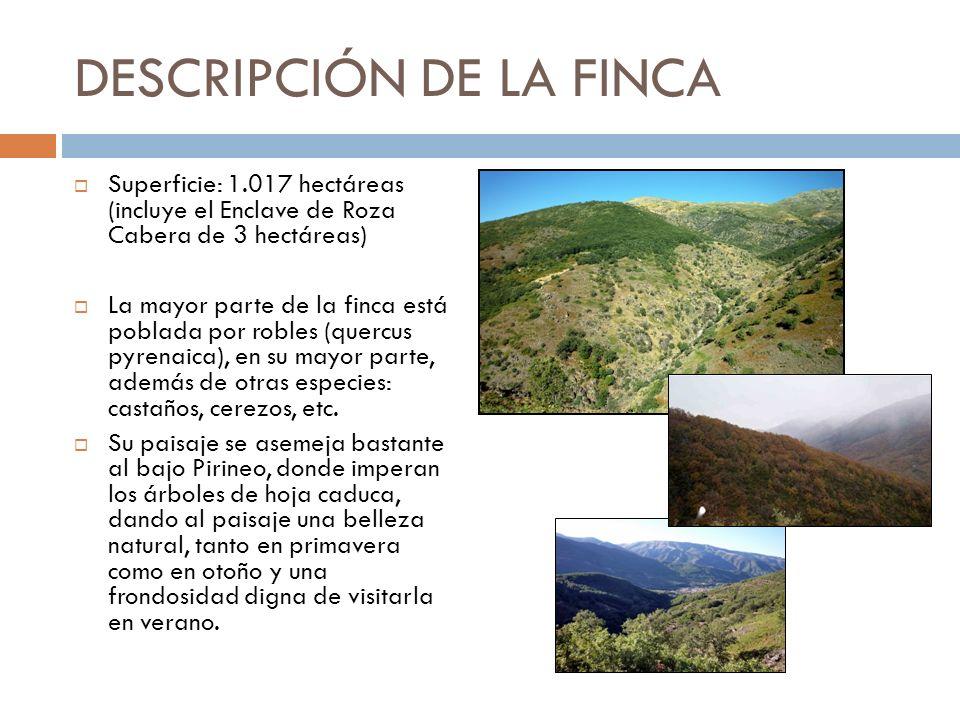 DESCRIPCIÓN DE LA FINCA Superficie: 1.017 hectáreas (incluye el Enclave de Roza Cabera de 3 hectáreas) La mayor parte de la finca está poblada por rob