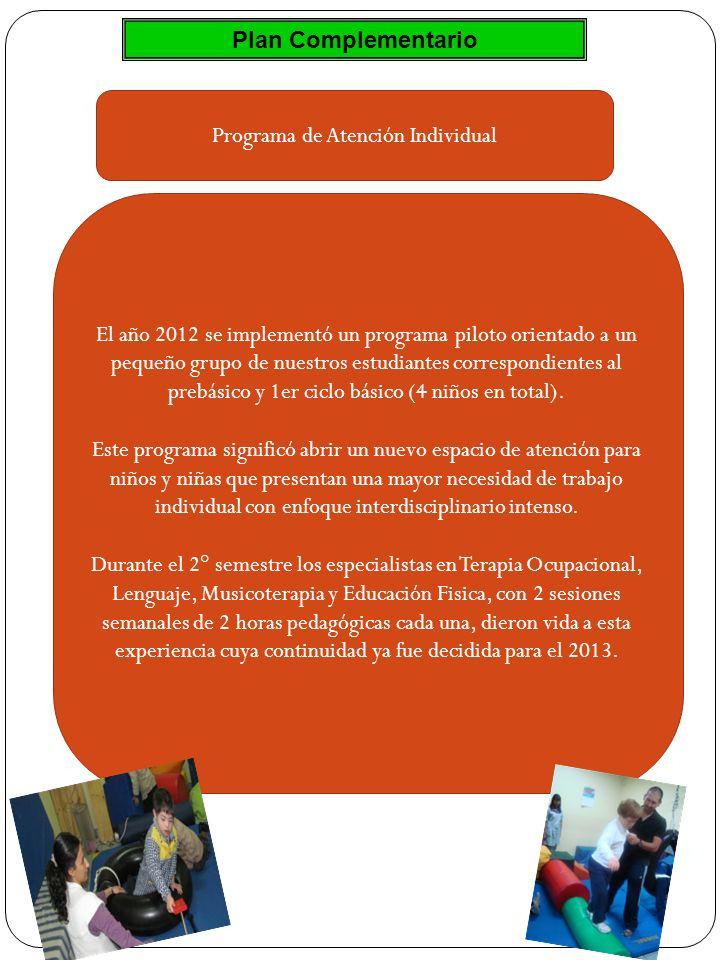 Plan Complementario Programa de Atención Individual El año 2012 se implementó un programa piloto orientado a un pequeño grupo de nuestros estudiantes