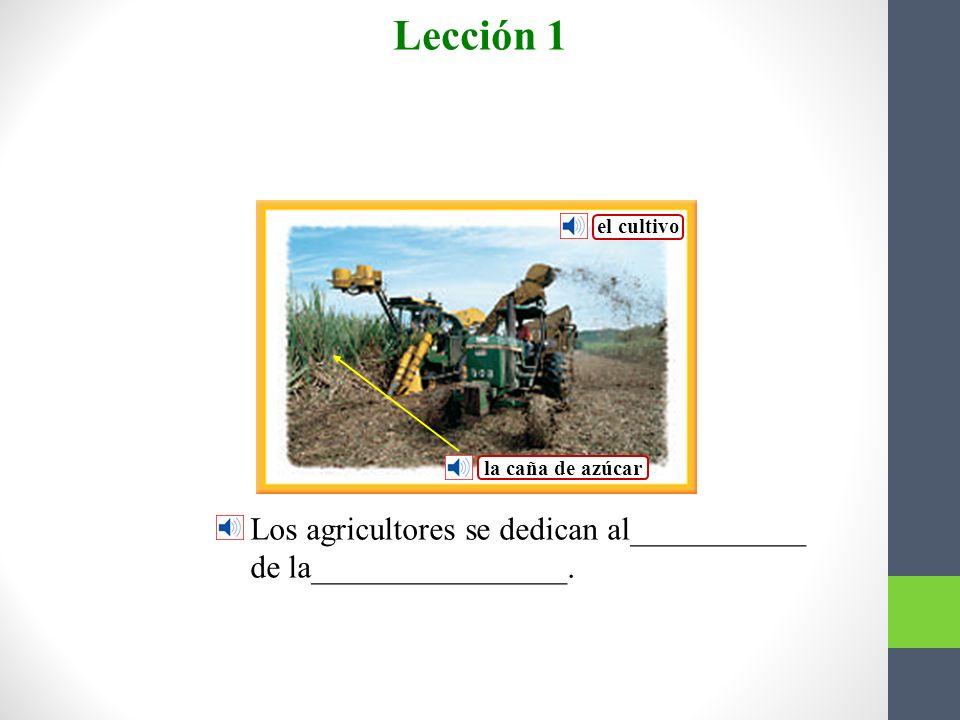 el cacique las cadenas El ________nunca se _______a los españoles._ Lección 1 Vocabulario para la lectura Nunca llevaría___________.