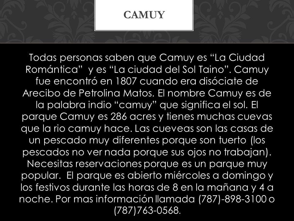 Todas personas saben que Camuy es La Ciudad Romántica y es La ciudad del Sol Taino.