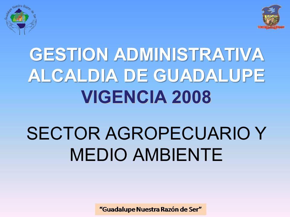 GESTION ADMINISTRATIVA ALCALDIA DE GUADALUPE VIGENCIA 2008 GESTION ADMINISTRATIVA ALCALDIA DE GUADALUPE VIGENCIA 2008 SECTOR AGROPECUARIO Y MEDIO AMBI