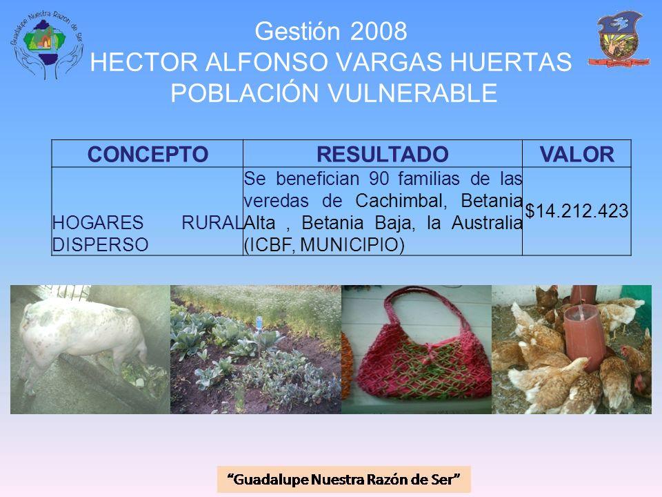 Gestión 2008 HECTOR ALFONSO VARGAS HUERTAS POBLACIÓN VULNERABLE CONCEPTORESULTADOVALOR HOGARES RURAL DISPERSO Se benefician 90 familias de las veredas