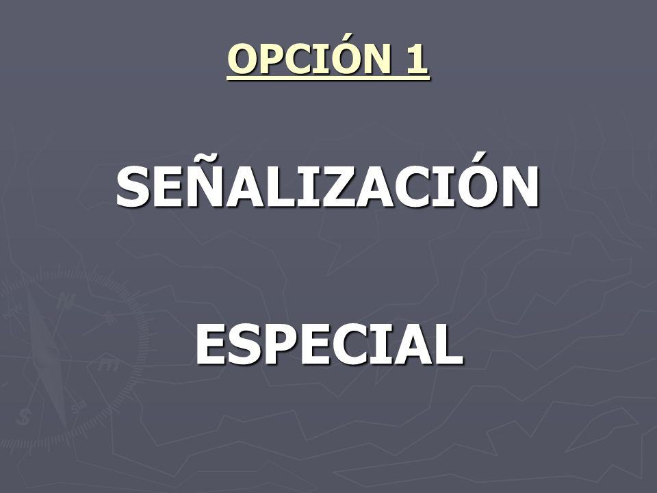 OPCIÓN 1 SEÑALIZACIÓNESPECIAL
