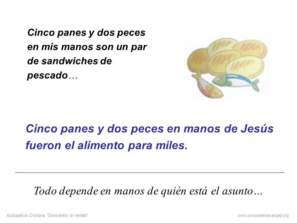 Apologética Cristiana Conoceréis la Verdadwww.conocereislaverdad.org Cinco panes y dos peces en mis manos son un par de sandwiches de pescado… Cinco p