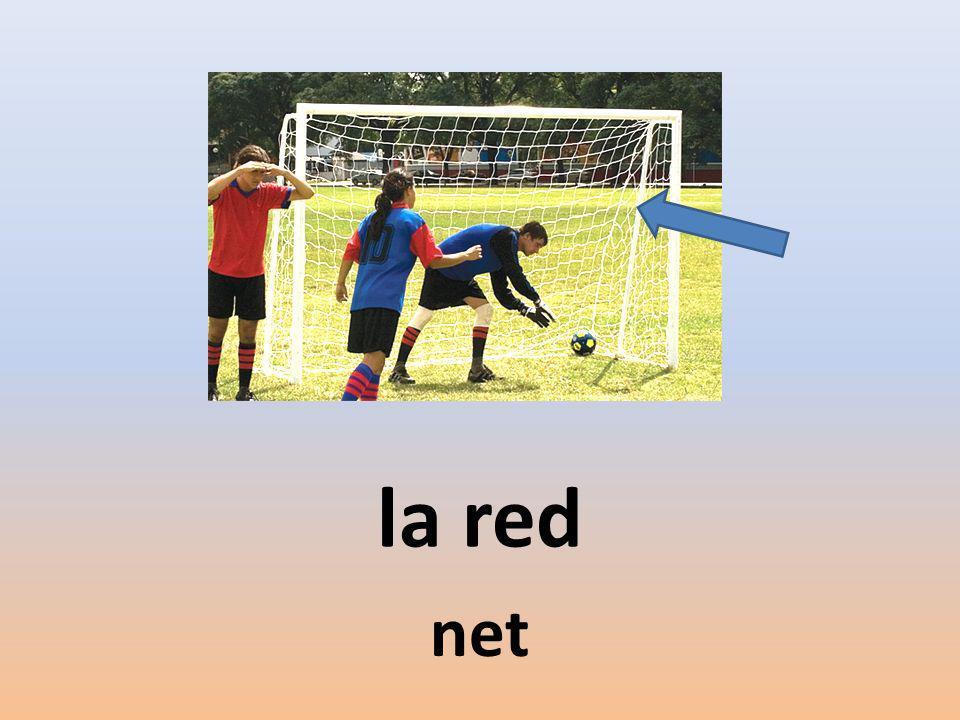 la red net