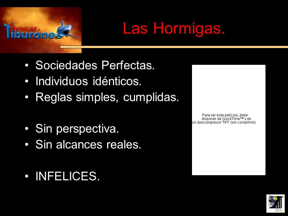 Las Hormigas. Sociedades Perfectas. Individuos idénticos. Reglas simples, cumplidas. Sin perspectiva. Sin alcances reales. INFELICES.