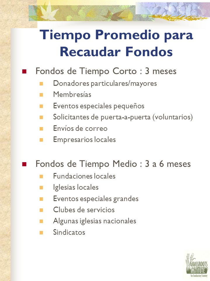 Fuentes de Fondos Honorarios por Servicios/Información Boletines Investigaciones/encuestas Entrenamiento Directorios Revistas de anuncios Venta de Pro