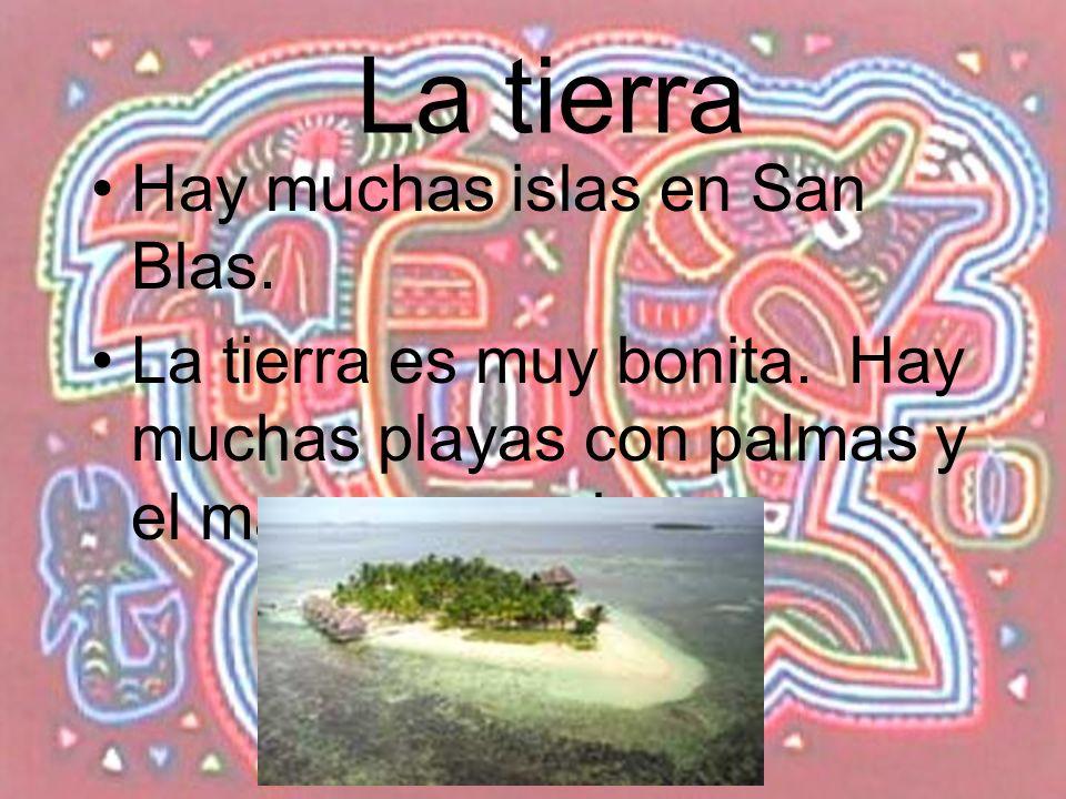La tierra Hay muchas islas en San Blas. La tierra es muy bonita. Hay muchas playas con palmas y el mar es muy claro.