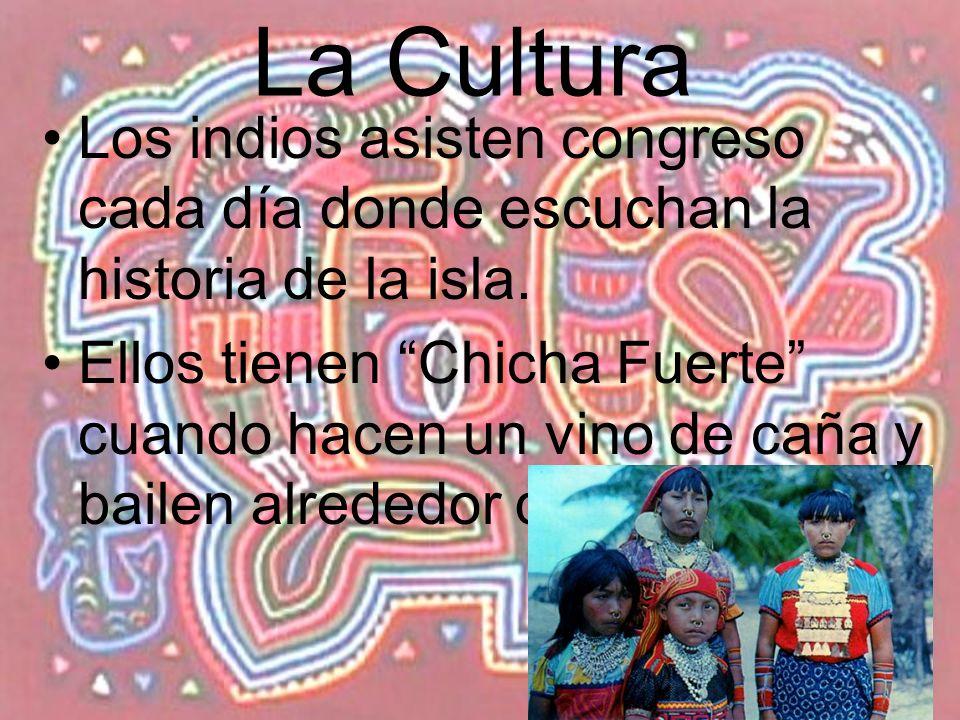 La Cultura Los indios asisten congreso cada día donde escuchan la historia de la isla. Ellos tienen Chicha Fuerte cuando hacen un vino de caña y baile