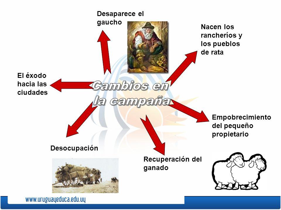 Desaparece el gaucho El éxodo hacia las ciudades Desocupación Recuperación del ganado Empobrecimiento del pequeño propietario Nacen los rancheríos y l