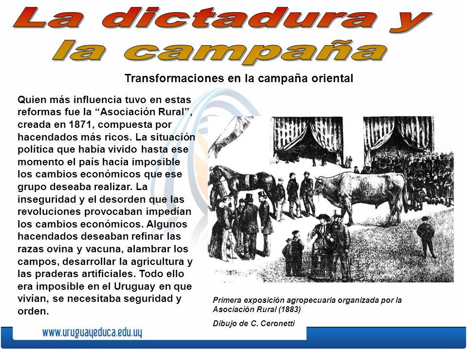 Transformaciones en la campaña oriental Quien más influencia tuvo en estas reformas fue la Asociación Rural, creada en 1871, compuesta por hacendados