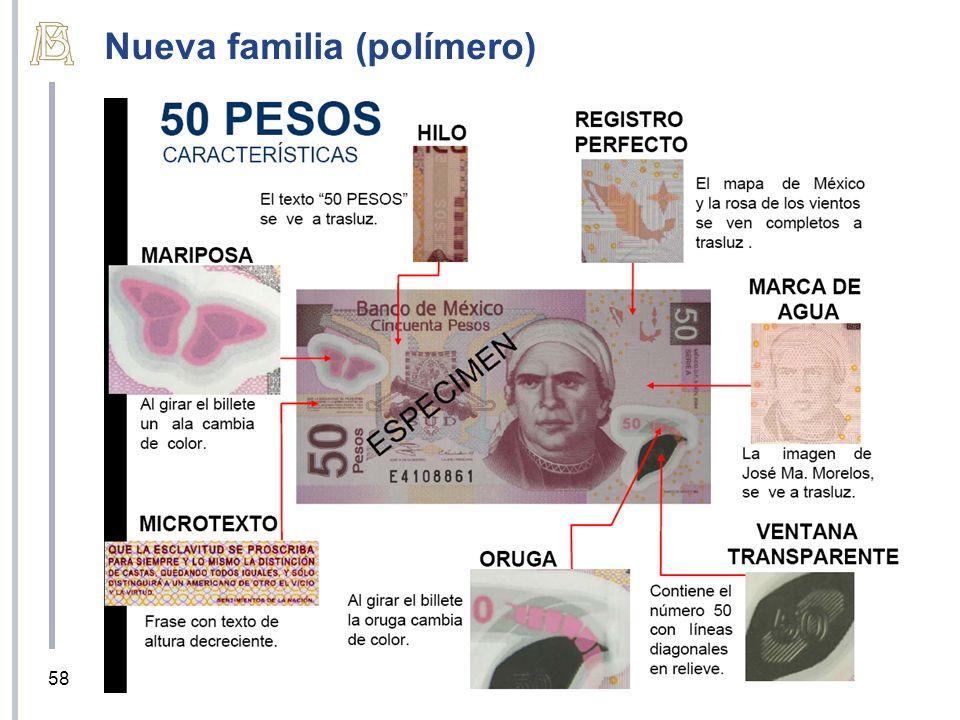 58 Nueva familia (polímero)