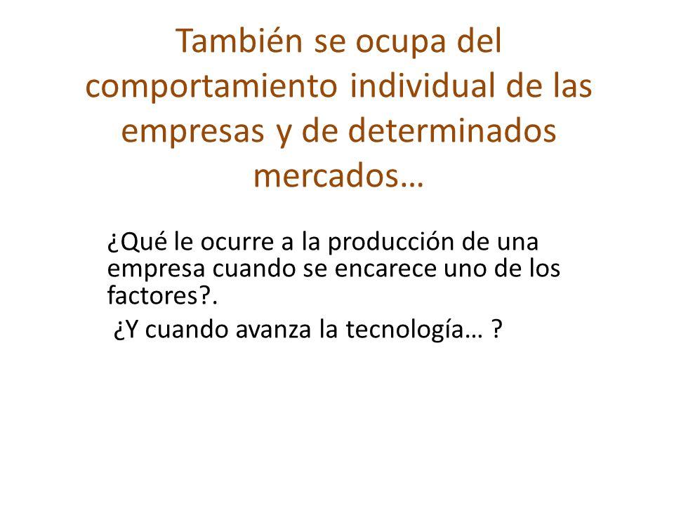 También se ocupa del comportamiento individual de las empresas y de determinados mercados… ¿Qué le ocurre a la producción de una empresa cuando se enc