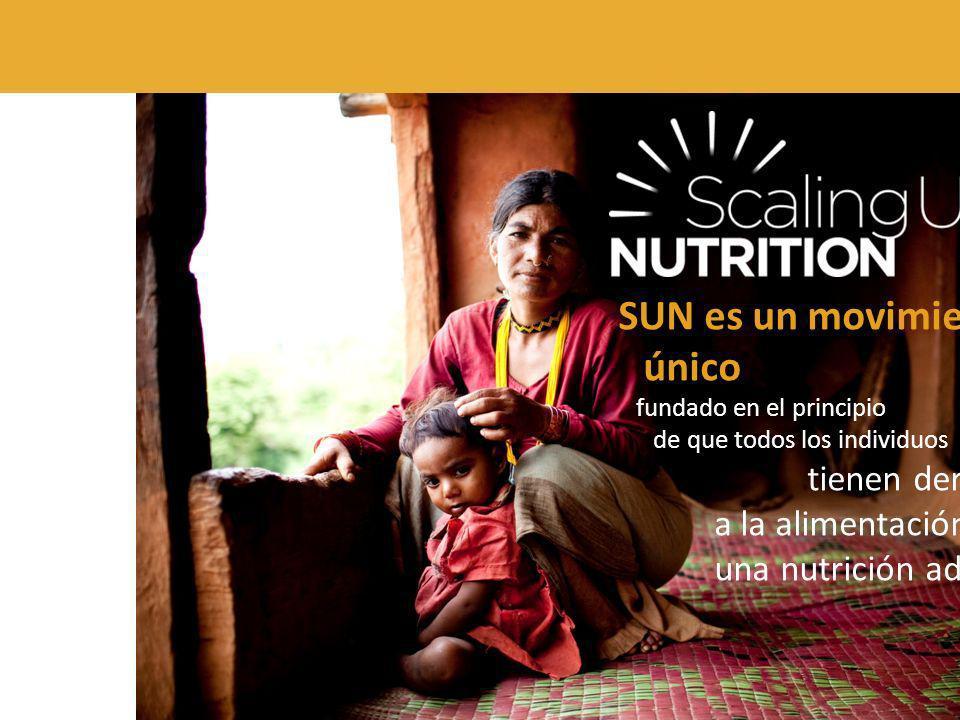 SUN es un movimiento único fundado en el principio de que todos los individuos tienen derecho a la alimentación y a una nutrición adecuada.