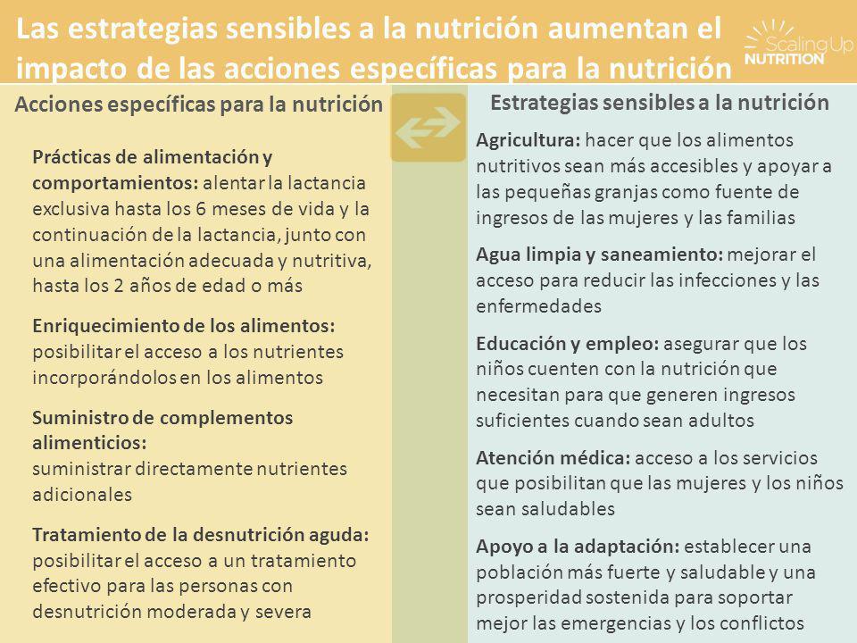 Prácticas de alimentación y comportamientos: alentar la lactancia exclusiva hasta los 6 meses de vida y la continuación de la lactancia, junto con una alimentación adecuada y nutritiva, hasta los 2 años de edad o más Enriquecimiento de los alimentos: posibilitar el acceso a los nutrientes incorporándolos en los alimentos Suministro de complementos alimenticios: suministrar directamente nutrientes adicionales Tratamiento de la desnutrición aguda: posibilitar el acceso a un tratamiento efectivo para las personas con desnutrición moderada y severa Agricultura: hacer que los alimentos nutritivos sean más accesibles y apoyar a las pequeñas granjas como fuente de ingresos de las mujeres y las familias Agua limpia y saneamiento: mejorar el acceso para reducir las infecciones y las enfermedades Educación y empleo: asegurar que los niños cuenten con la nutrición que necesitan para que generen ingresos suficientes cuando sean adultos Atención médica: acceso a los servicios que posibilitan que las mujeres y los niños sean saludables Apoyo a la adaptación: establecer una población más fuerte y saludable y una prosperidad sostenida para soportar mejor las emergencias y los conflictos Estrategias sensibles a la nutrición Acciones específicas para la nutrición Las estrategias sensibles a la nutrición aumentan el impacto de las acciones específicas para la nutrición