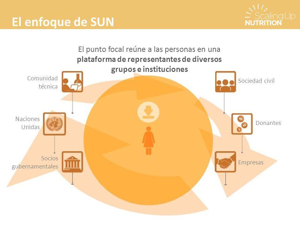 El enfoque de SUN El punto focal reúne a las personas en una plataforma de representantes de diversos grupos e instituciones Comunidad técnica Naciones Unidas Socios gubernamentales Sociedad civil Donantes Empresas