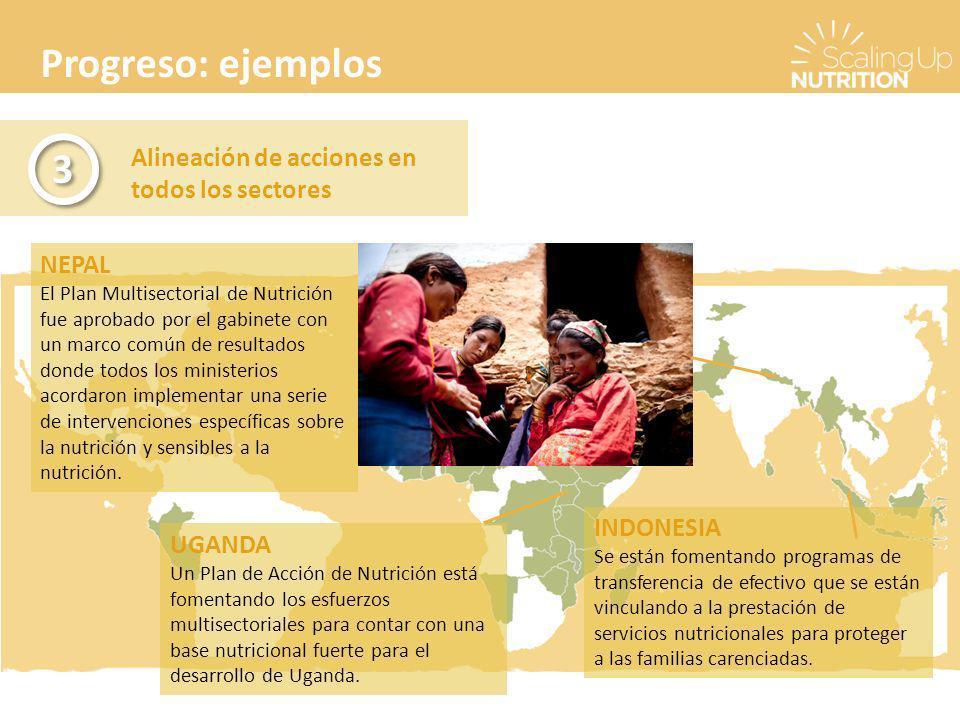Progreso: ejemplos Alineación de acciones en todos los sectores 3 3 NEPAL El Plan Multisectorial de Nutrición fue aprobado por el gabinete con un marco común de resultados donde todos los ministerios acordaron implementar una serie de intervenciones específicas sobre la nutrición y sensibles a la nutrición.