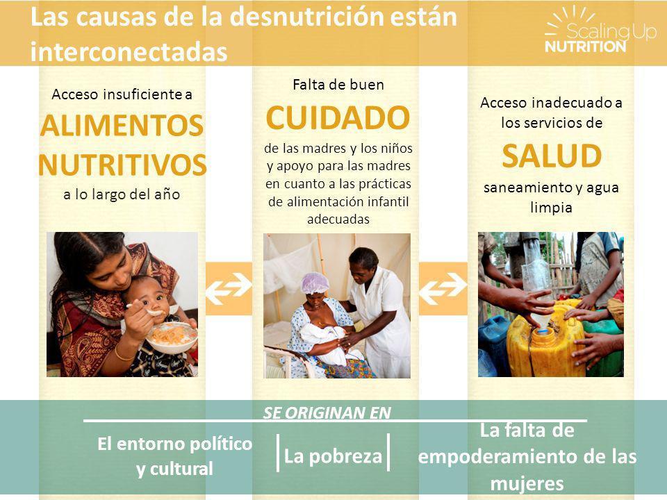 SE ORIGINAN EN La pobreza La falta de empoderamiento de las mujeres El entorno político y cultural Acceso insuficiente a ALIMENTOS NUTRITIVOS a lo largo del año Falta de buen CUIDADO de las madres y los niños y apoyo para las madres en cuanto a las prácticas de alimentación infantil adecuadas Acceso inadecuado a los servicios de SALUD saneamiento y agua limpia Las causas de la desnutrición están interconectadas