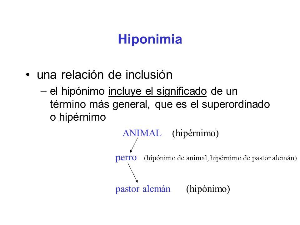 Hiponimia una relación de inclusión –el hipónimo incluye el significado de un término más general, que es el superordinado o hipérnimo ANIMAL (hipérnimo) perro (hipónimo de animal, hipérnimo de pastor alemán) pastor alemán (hipónimo)