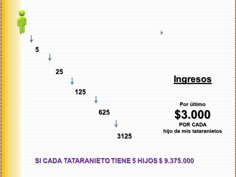 Ingresos SI CADA TATARANIETO TIENE 5 HIJOS $ 9.375.000 5 25 125 625 3125 Por último $3.000 POR CADA hijo de mis tataranietos
