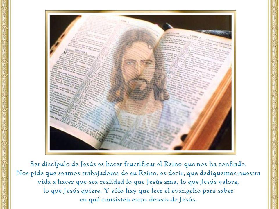 Ser discípulo de Jesús es hacer fructificar el Reino que nos ha confiado. Nos pide que seamos trabajadores de su Reino, es decir, que dediquemos nuest