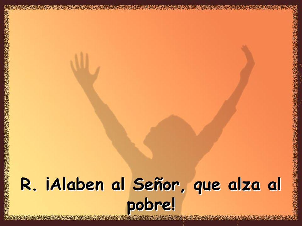 El Señor está sobre todas las naciones, su gloria se eleva sobre el cielo. ¿Quién es como el Señor, nuestro Dios, que tiene su morada en las alturas,