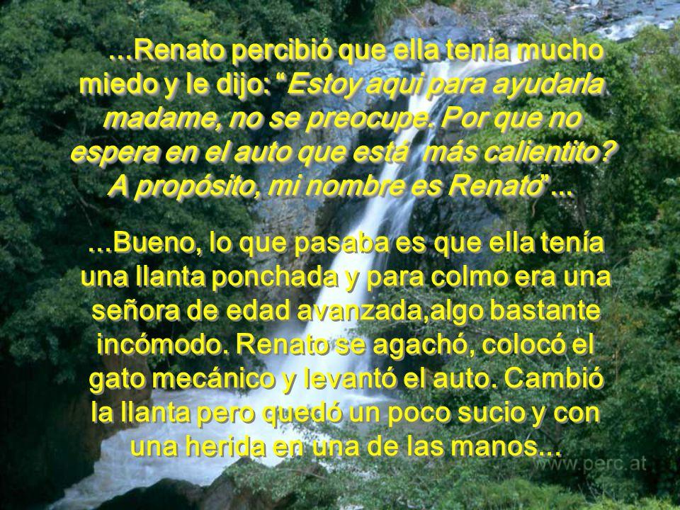 Renato casi no vió a la señora, en el auto parado al costado de la carretera. Llovía fuerte y era de noche. Pero se dió cuenta que ella necesitaba de