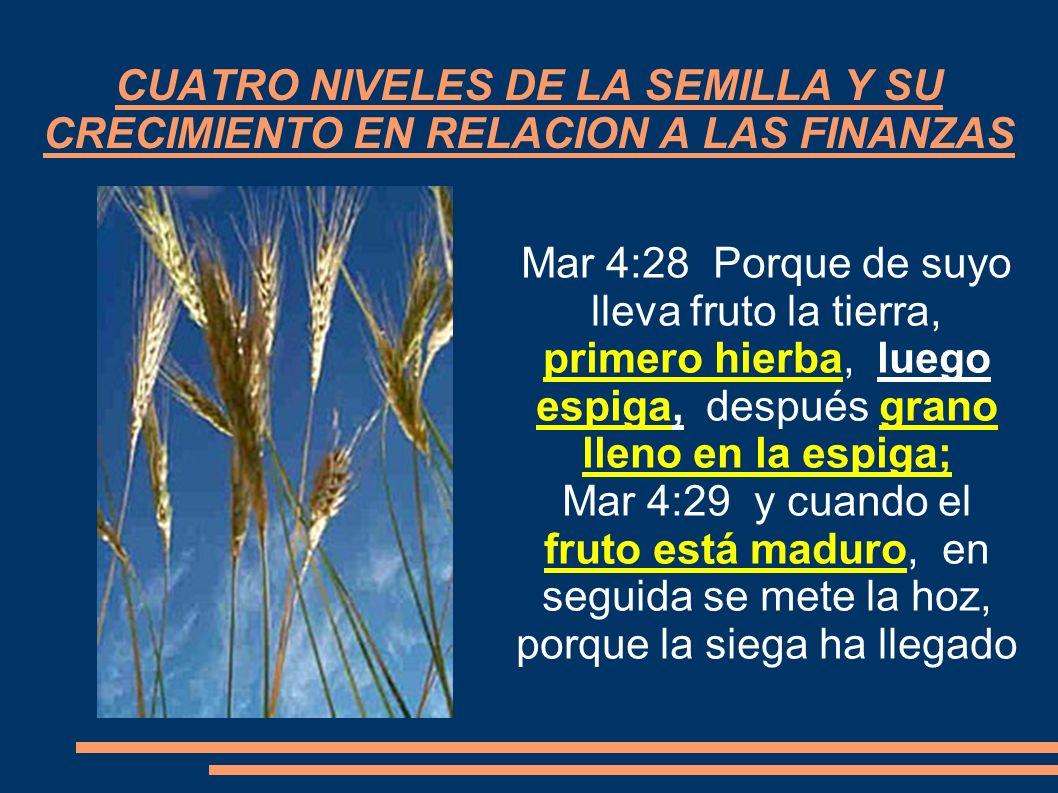 CUATRO NIVELES DE LA SEMILLA Y SU CRECIMIENTO EN RELACION A LAS FINANZAS Mar 4:28 Porque de suyo lleva fruto la tierra, primero hierba, luego espiga,