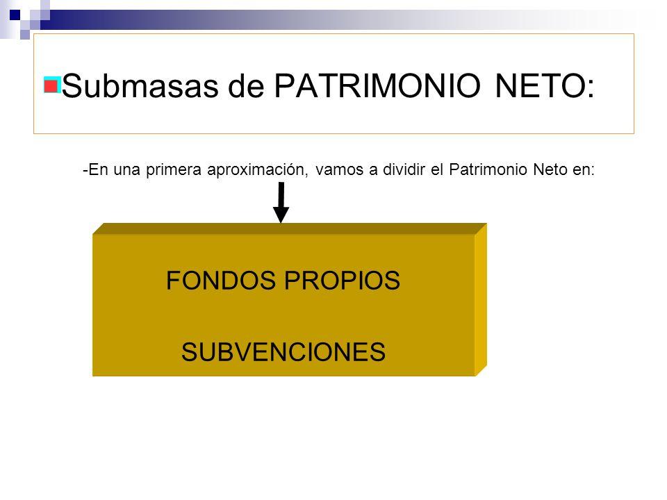 Submasas de PATRIMONIO NETO: FONDOS PROPIOS SUBVENCIONES -En una primera aproximación, vamos a dividir el Patrimonio Neto en: