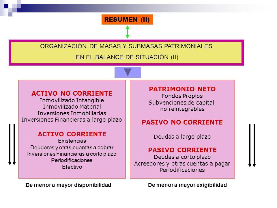 ORGANIZACIÓN DE MASAS Y SUBMASAS PATRIMONIALES EN EL BALANCE DE SITUACIÓN (II) PATRIMONIO NETO Fondos Propios Subvenciones de capital no reintegrables
