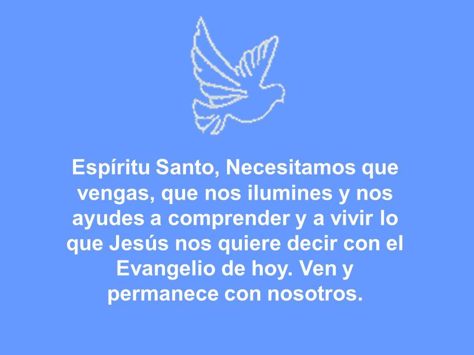 Espíritu Santo, Necesitamos que vengas, que nos ilumines y nos ayudes a comprender y a vivir lo que Jesús nos quiere decir con el Evangelio de hoy. Ve