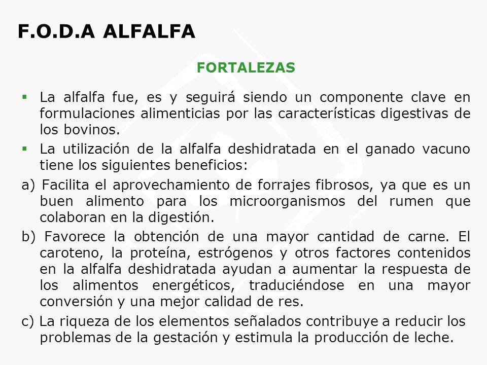 F.O.D.A ALFALFA OPORTUNIDADES Problemas derivados de la alimentación del ganado con proteínas animales (vaca loca).