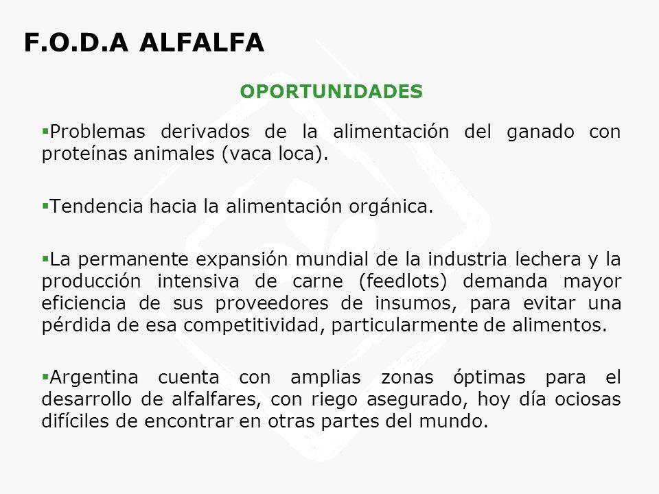 F.O.D.A ALFALFA OPORTUNIDADES Pocos países reúnen las condiciones para el cultivo de alfalfa.