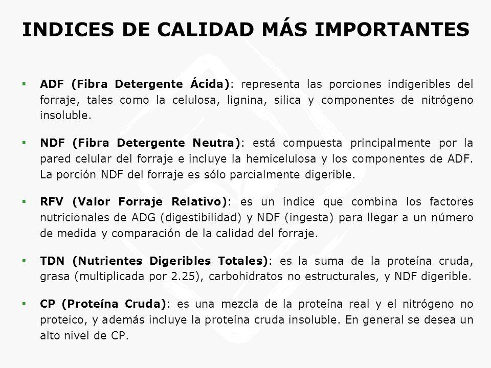 Cubos y pellets de alfalfa - Características del producto Proteína cruda (%) Fibra cruda (%) TDN (%) Energía digerible mcal/kg Caroteno mg/Kg Fibra detergente ácido (%) Lisina (%) Calcio (%) Pellets deshidratados 18.852566.62.91180340.941.5 Pellets secados al sol 172861.52.6857.8350.791.5 Cubos deshidratados 1728612.6857.8350.791.5 Especificaciones pellets de alfalfa Calidad ADFNDFRFV TDN 100 % TDN 90 % CP Supreme <27<34>185>62>55.9>22 Premium 27-2934-36170-18560.5-6254.5-55.920-22 Good 29-3236-40150-17058-6052.5-54.518-20 Fair 32-3540-44130-15056-5850.5-52.516-18 Utility >35>44<130<56<50.5<16