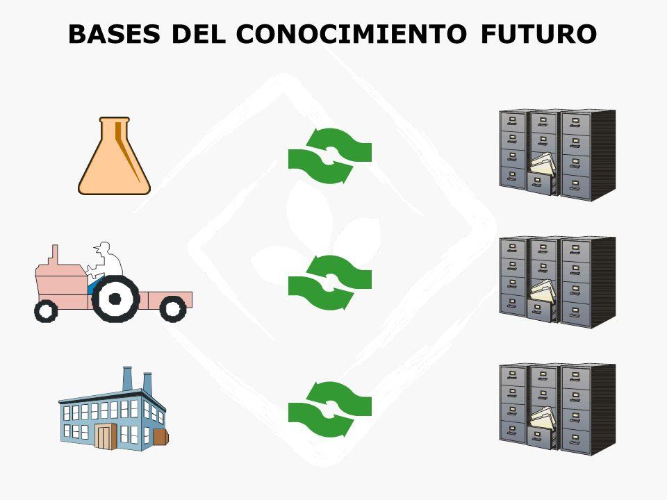 Procesos Productos Recursos ProveedoresClientes Creación del valor ALFALFA - FLUJO DEL NEGOCIO