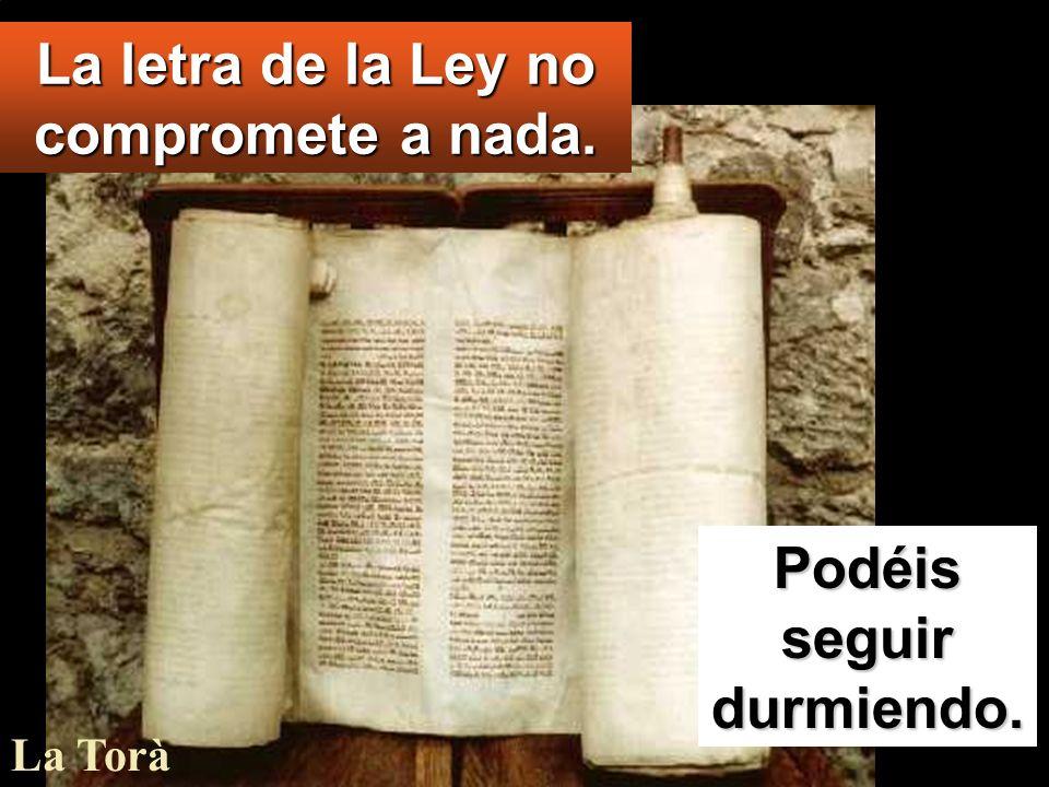 Ya sabes los mandamientos: no matarás, no cometerás adulterio, no robarás, no darás falso testimonio, no estafarás, honra a tu padre y a tu madre.
