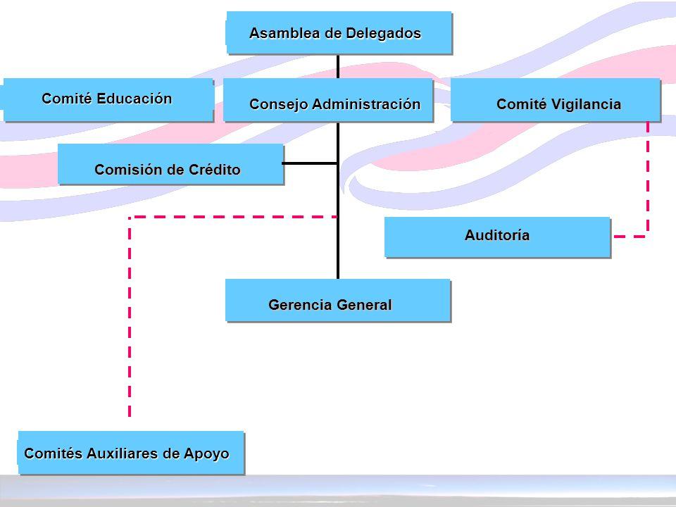 Consejo Administración Auditoría Comisión de Crédito Asamblea de Delegados Comité Vigilancia Comité Vigilancia Comité Educación Comité Educación Geren