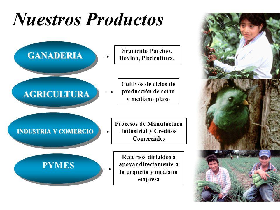 Nuestros Productos Cultivos de ciclos de producción de corto y mediano plazo AGRICULTURA INDUSTRIA Y COMERCIO Procesos de Manufactura Industrial y Cré