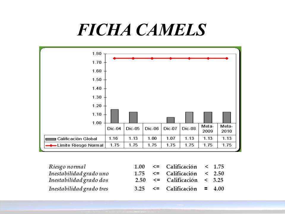 FICHA CAMELS Riesgo normal 1.00 <= Calificación < 1.75 Inestabilidad grado uno 1.75 <= Calificación < 2.50 Inestabilidad grado dos 2.50 <= Calificació