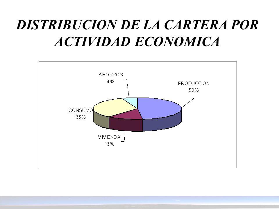 DISTRIBUCION DE LA CARTERA POR ACTIVIDAD ECONOMICA