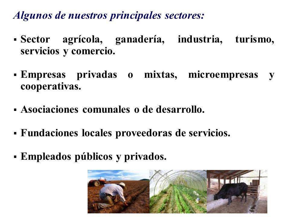 Algunos de nuestros principales sectores: Sector agrícola, ganadería, industria, turismo, servicios y comercio. Empresas privadas o mixtas, microempre