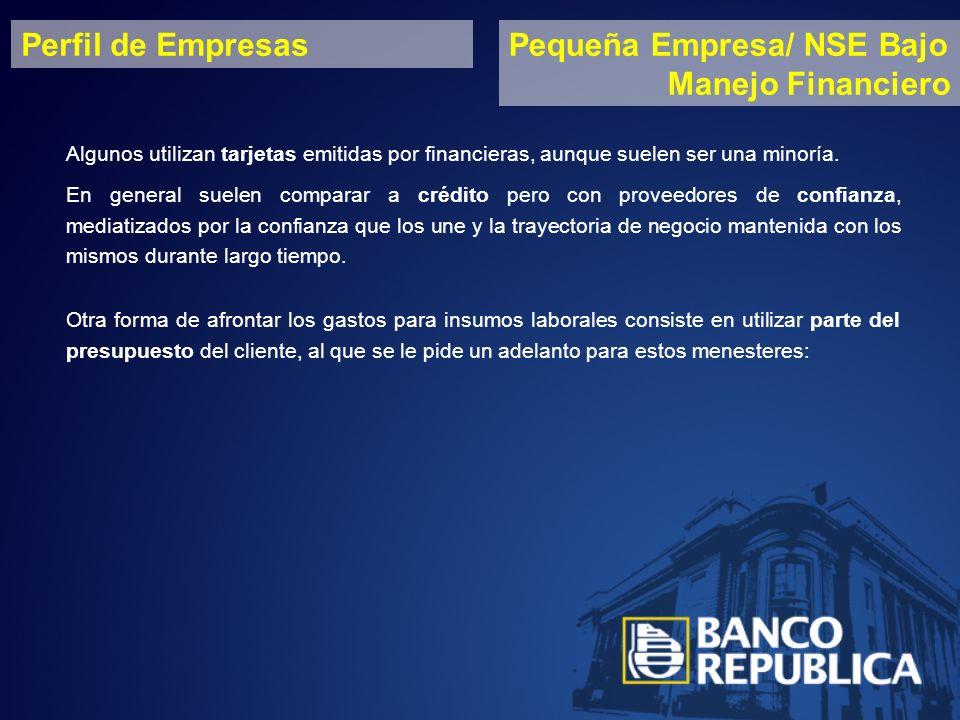 Perfil de EmpresasPequeña Empresa/ NSE Bajo Manejo Financiero Algunos utilizan tarjetas emitidas por financieras, aunque suelen ser una minoría.