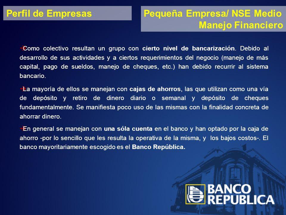 Perfil de EmpresasPequeña Empresa/ NSE Medio Manejo Financiero Como colectivo resultan un grupo con cierto nivel de bancarización.