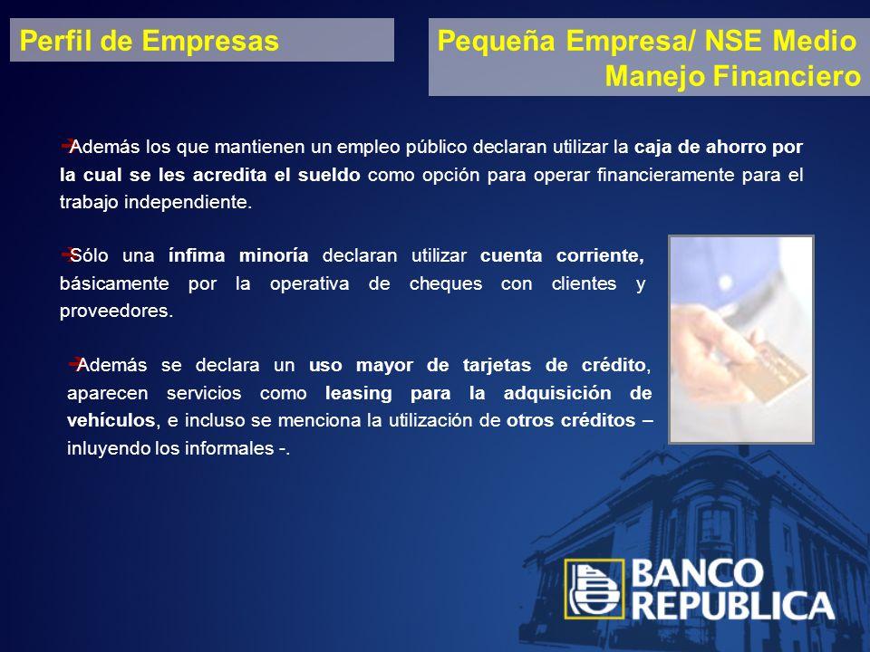 Perfil de EmpresasPequeña Empresa/ NSE Medio Manejo Financiero Además los que mantienen un empleo público declaran utilizar la caja de ahorro por la cual se les acredita el sueldo como opción para operar financieramente para el trabajo independiente.